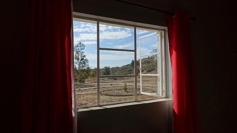 Blick aus einem geöffneten Fenster