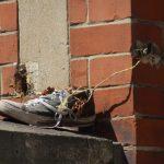 ein Schuh steht auf der Mauer